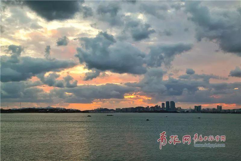 养什么鸽子最赚钱:大风蓝色预警!青岛这个地方将要下雪了?