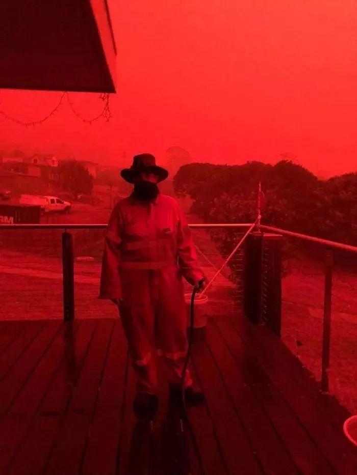澳洲大火烧死近5亿动物,燃烧4个月不灭的真相令人绝望