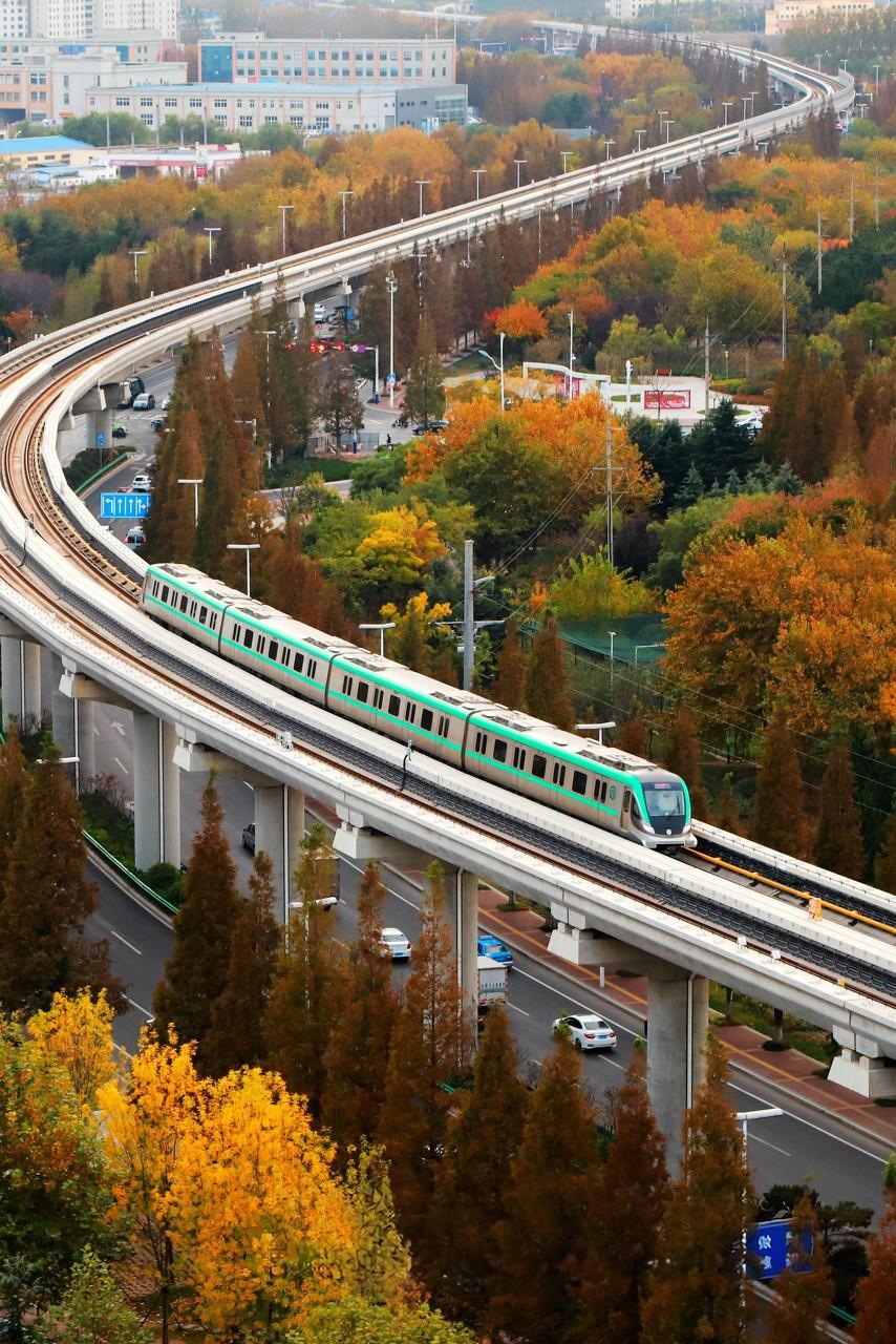 智慧赋能 青岛地铁驶入发展快车道