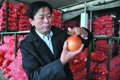 平度/平度菜农当8年阿里巴巴洋葱标王 亲自跟外商谈判
