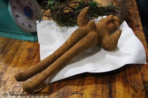 村民称挖出人形根长着&quot男性生殖器&quot