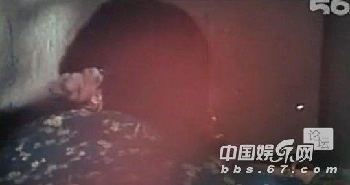 日本sm三级片_成龙大哥早年三级片曝光 与艳星翻云覆雨 口味重(图)