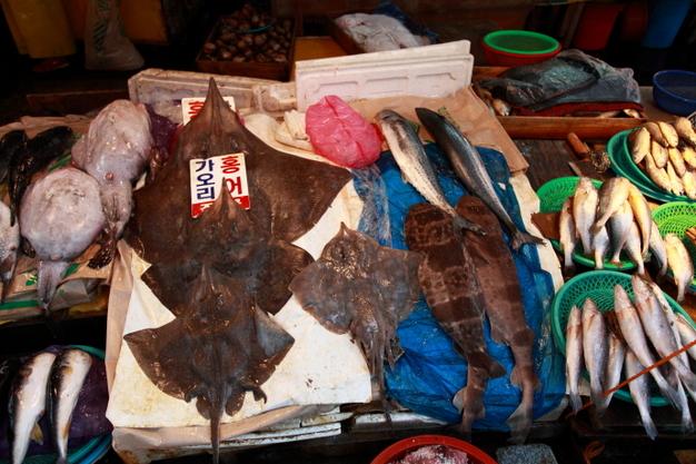 韩国海鲜市场 - 青岛新闻网