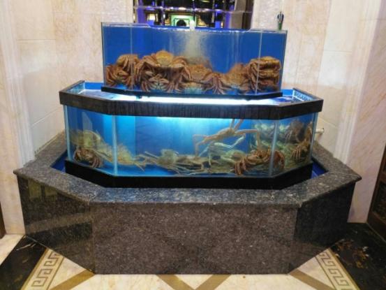 专业制做海鲜鱼缸及各种异形观赏鱼缸