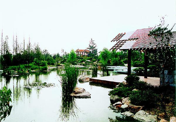 青岛新闻网 经济频道 热点专题    青岛城阳世纪公园            由